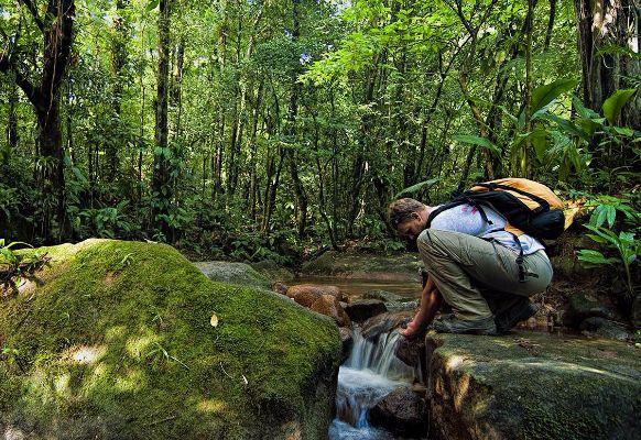 Trilhas - Foto de Parque Lage, Rio de Janeiro - TripAdvisor