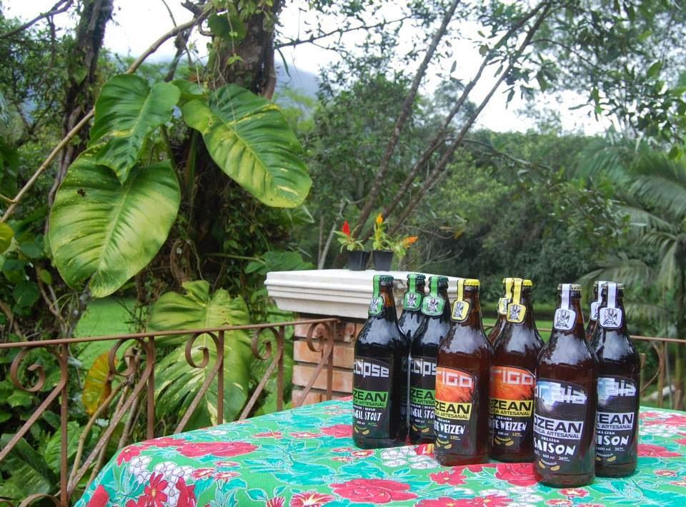 Um oceano de cervejas artesanais